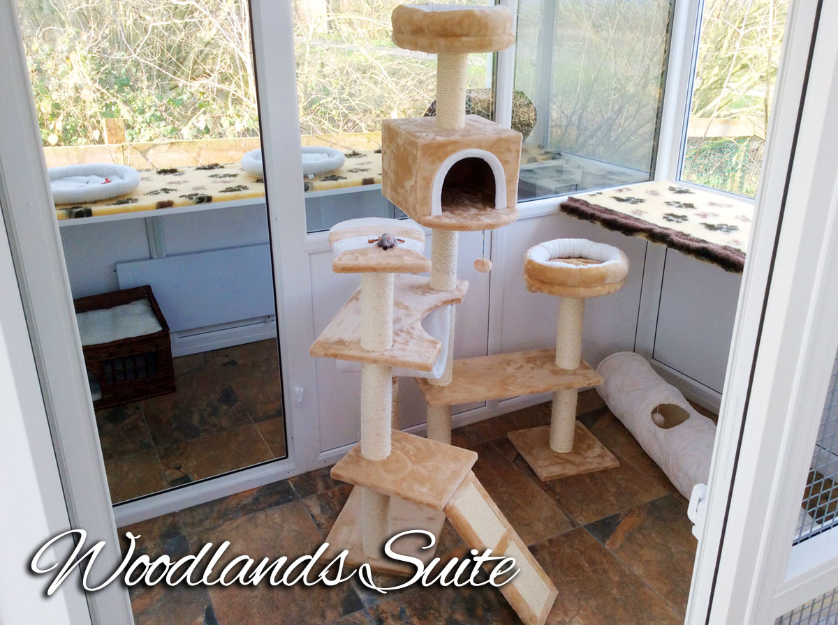 Cattery Prices in Lincolnshire